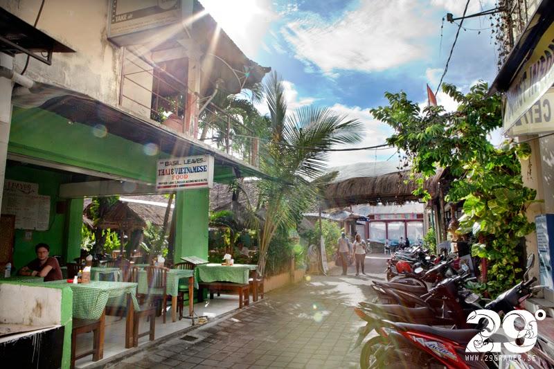Basil-Leaves_Thai-Food_Bali_Kuta_IMG_0453_1