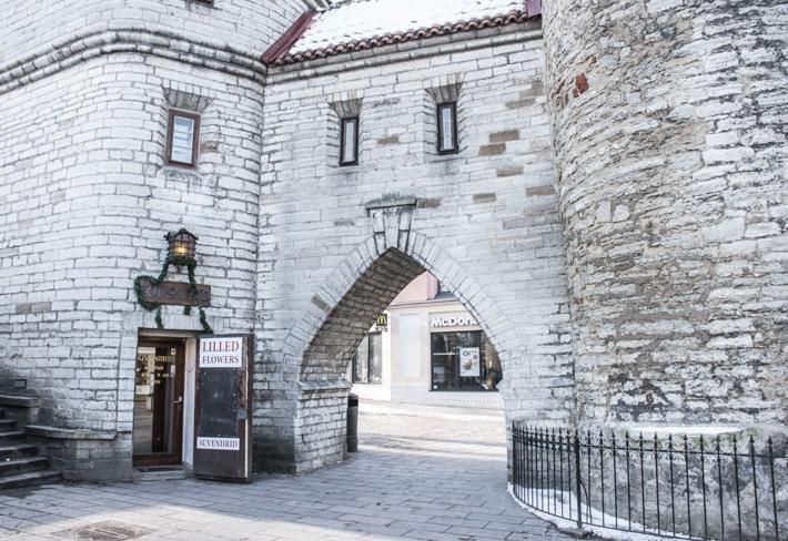 Tallinn- Möt en medeltida sagoby i pastell
