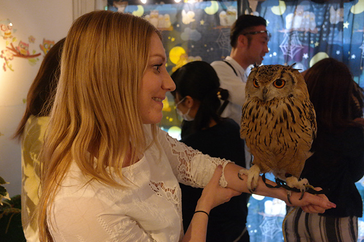 In-love-with-owls